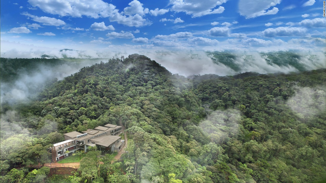 Is Ecuador's Mashpi Lodge the most sustainable way to stay in the jungle?