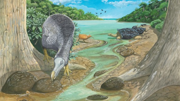 An illustration shows the dodo on Mauritius near the Mare aux Songes, where many dodo skeletons have been recovered.
