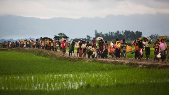 Myanmar's Rohingya ethnic minority members walk through rice fields after crossing over to the Bangladesh side of the border, Friday, Sept. 1.