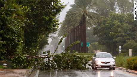 A car drives around a tree downed by winds from Hurricane Irma, Saturday, Sept. 9, 2017, in Golden Beach, Fla. (AP Photo/Wilfredo Lee)