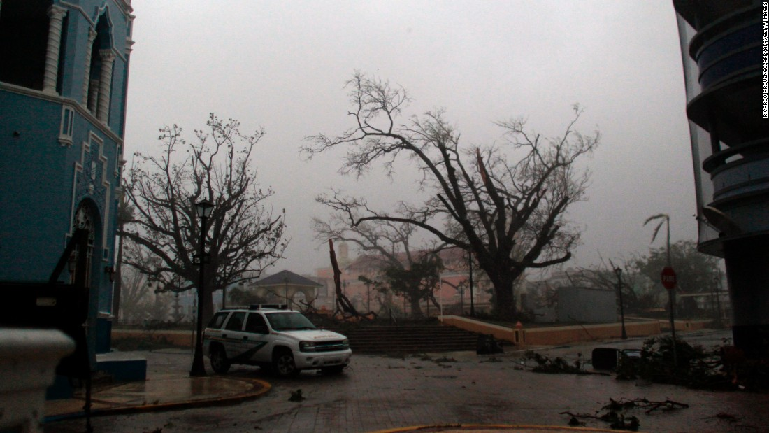 A tree is damaged in Fajardo, Puerto Rico, on September 20.