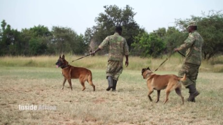 Inside Africa From hunting rebels to poachers A_00000214.jpg