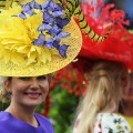 Best photos horseracing 2017: Royal Ascot Ladies Day hats