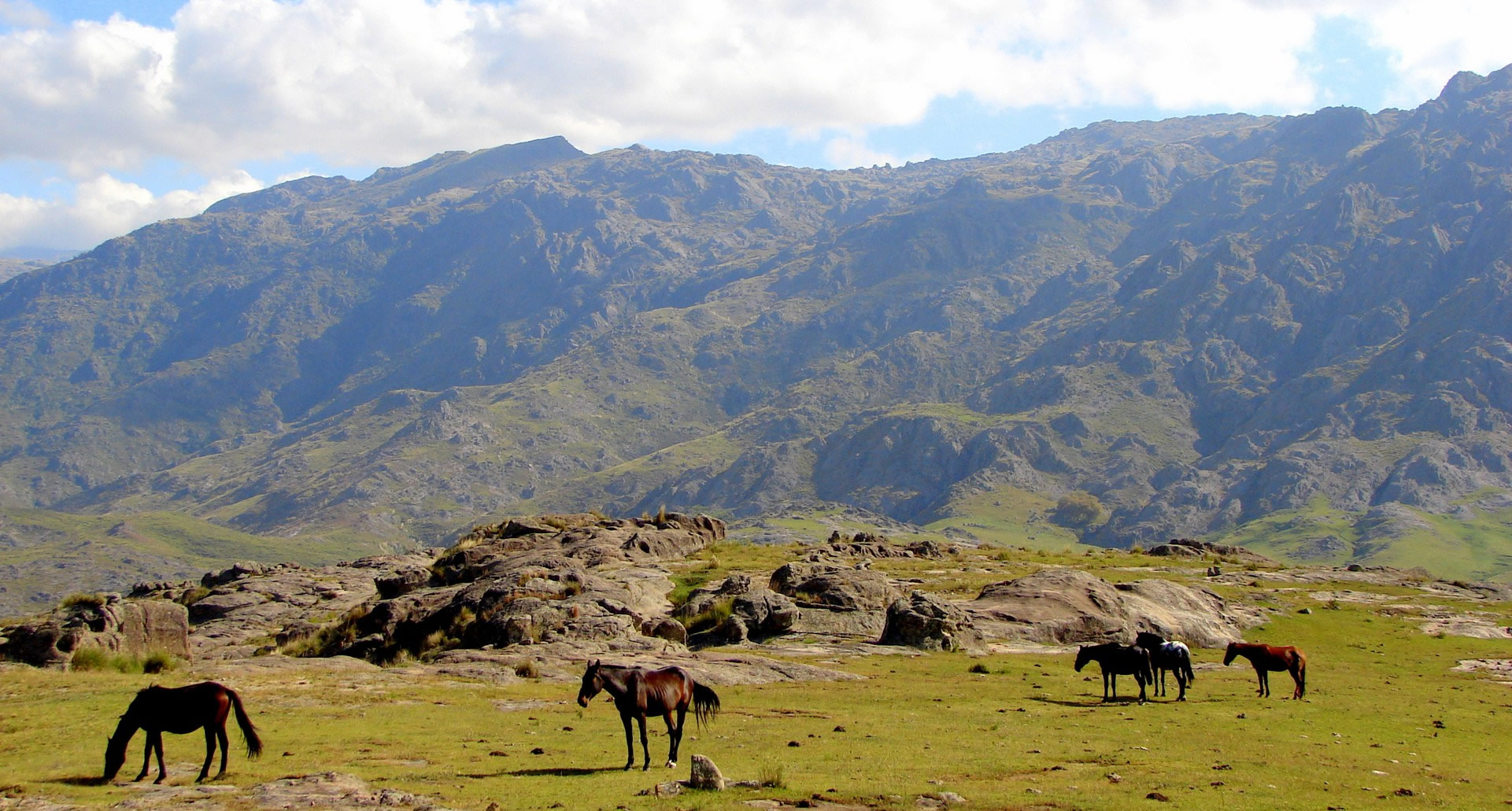 Image result for argentina countryside