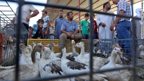 People shop for poultry at a market in Mosul's Gogjali neighborhood in July, just after the city's liberation from ISIS.