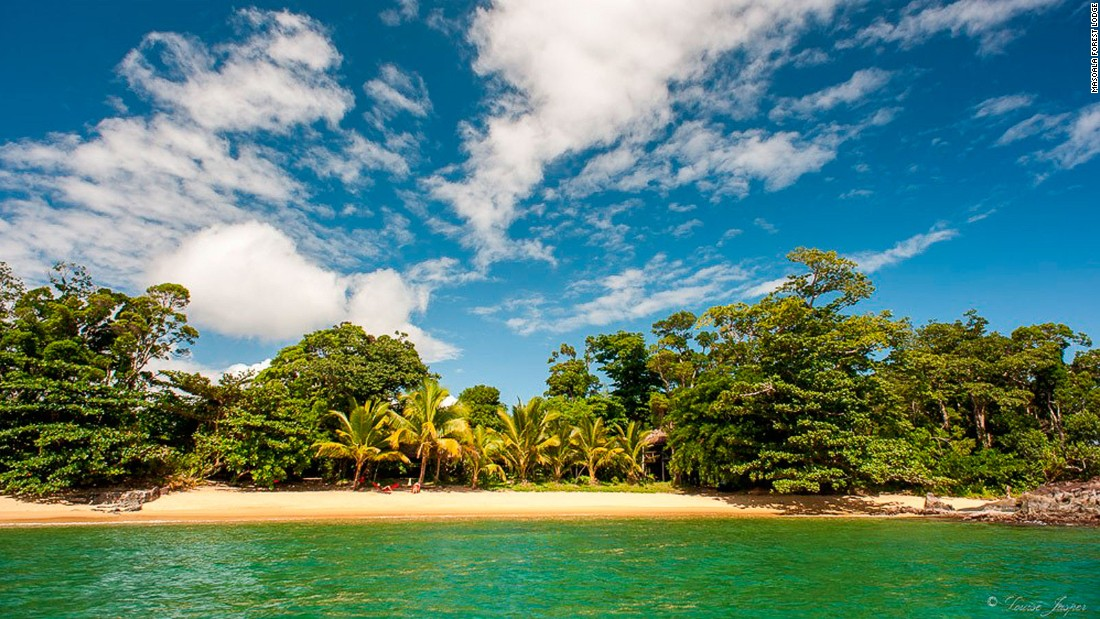 A luxury escape in an untouched rainforest
