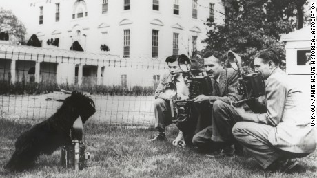 Roosevelt's dog Fala on the south lawn of the White House.