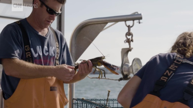 A Maine fisherman caught a rare cotton-candy-colored lobster -- again