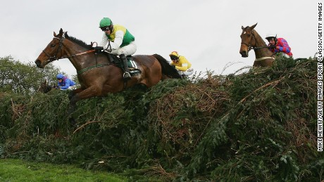 Willie Mullins trained Hedgehunter to Grand National win in 2005