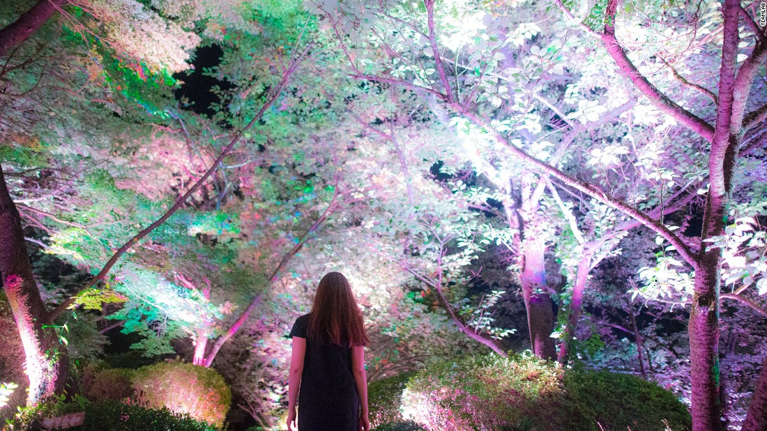 """A Forest Where Gods Live"" (2017) by teamLab was set in a large, beautiful park in Kyushu, southern Japan."