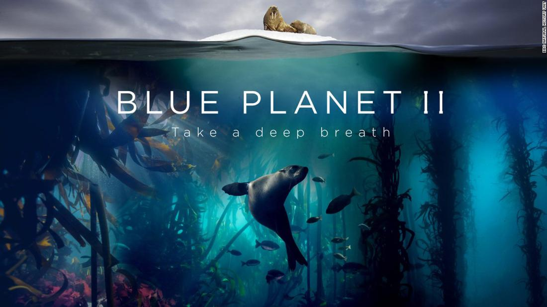 "The multi-award winning wildlife documentary series ""Blue Planet"" narrated by David Attenborough first aired in 2001.<br /><br />Five years in the making, ""Blue Planet"" explores underwater worlds and fascinating species. It sold to more than 150 territories around the world. The seven-parter sequel, ""Blue Planet II"" was filmed over four years, covering every continent and every ocean.<br /> <br />""Blue Planet II"" debuted in October this year, and was pre-sold to over 30 countries. The first episode drew 14 million UK viewers.<br />"
