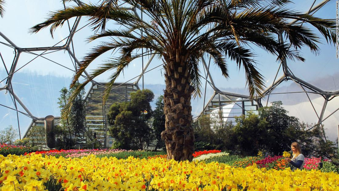 Each biome has plants from a particular region of the world. One is called the Mediterranean Biome and the other is the Rainforest Biome. There is also a large outdoor garden, restaurants and cafes and an education center.