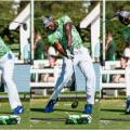 maurice allen long drive collage