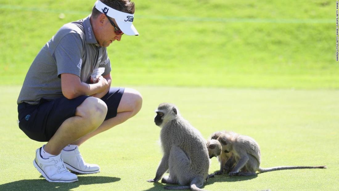 Ian Poulter made some friends at the Nedbank Golf Challenge, a European Tour event hosted by South Africa's Gary Player Country Club in Sun City.