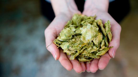 The wort is boiled and hops are added. Different hops are added at various intervals for bittering, flavor and aroma, and to balance the sweetness of the malt.