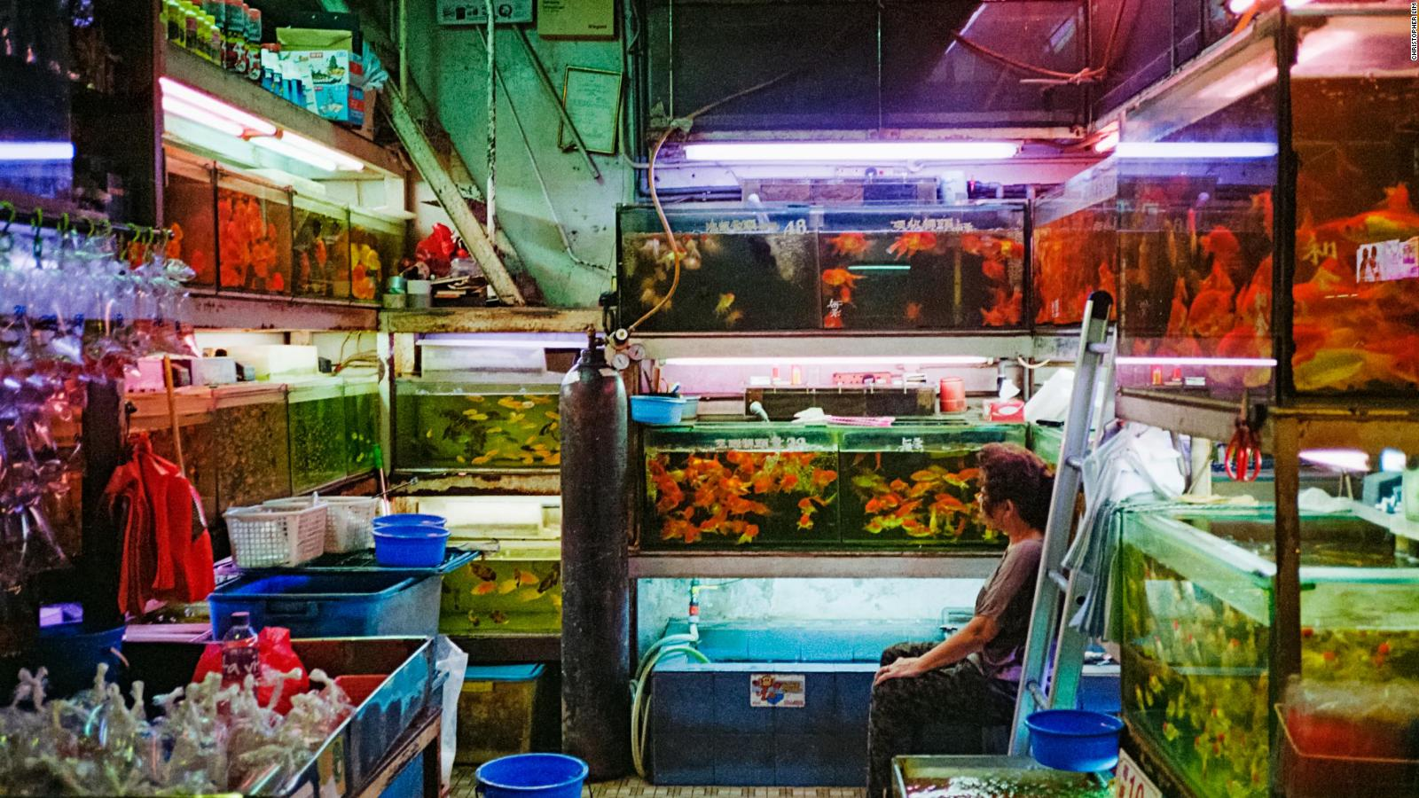Hong Kong street photography: Get tips from a pro   CNN Travel