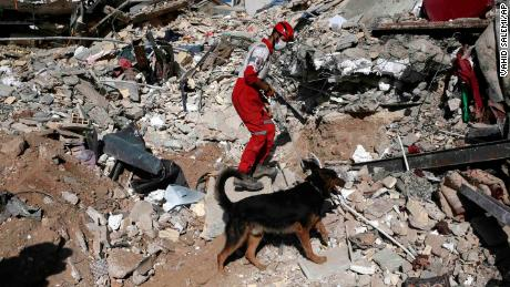 A rescue worker searches the debris with his sniffer dog on the earthquake site in Sarpol-e-Zahab in western Iran.