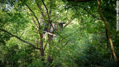An activist's treehouse in Hambach Forest.