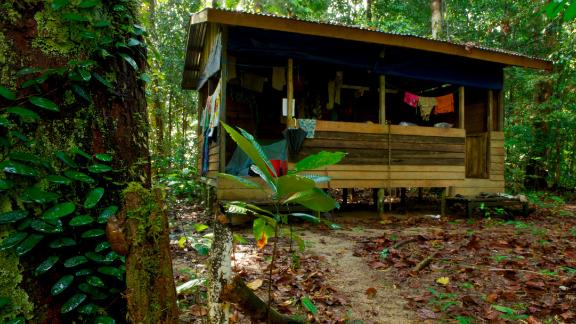 A beach house-type hut in Gunung Palung National Park, Borneo, Indonesia.
