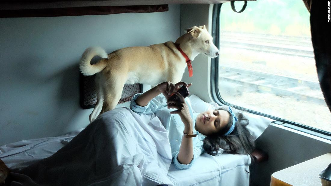 India by train -- with dogs?