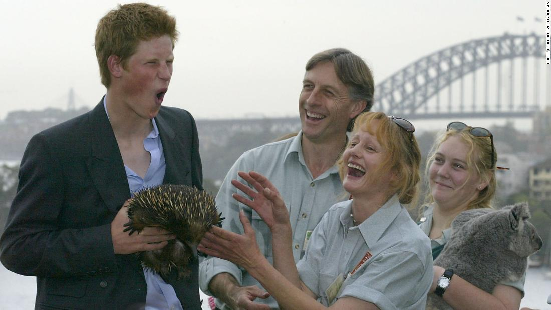 Harry holds an echidna at Sydney's Taronga Zoo in 2003.