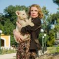22 netflix amazon hulu december The Zookeeper's Wife