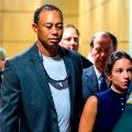 Tiger Woods court dui