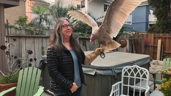 Kimberly Stroud, head of the Ojai Raptor Center, holds Wonder the turkey vulture after the evacuation.