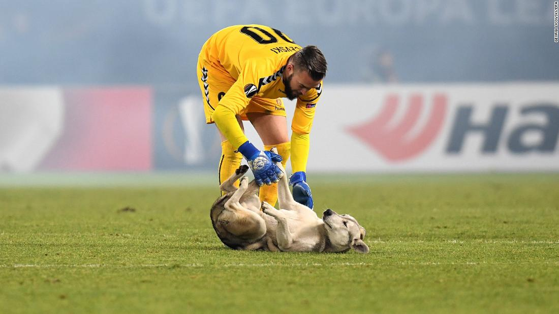 Vardar goalkeeper Filip Gachevski corrals a dog that ran onto the field during a Europa League match in Skopje, Macedonia, on Thursday, December 7.