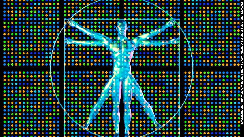 Genetic research. Computer artwork showing a DNA microarray and Leonardo da Vincis vitruvian man.