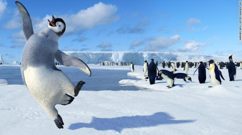 Penguins Have Long Held A Place Of Honor In Cartoons As Adorable Friends Or Comic Relief