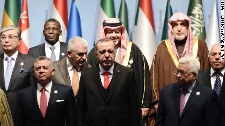 Turkish President Recep Tayyip Erdogan (front row, C) and other world leaders attend the Organisation of Islamic Cooperation summit in Istanbul on Wednesday.