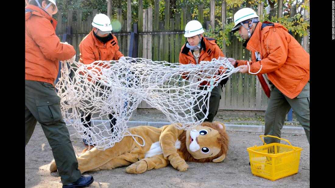Zookeepers capture a staff member wearing a lion costume during an animal-escape exercise at the Tennoji Zoo in Osaka, Japan, on Tuesday, December 12.
