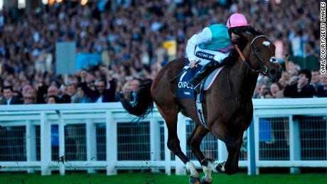 One of the greats -- Frankel wins the Queen Elizabeth II Stakes at Ascot in 2011.