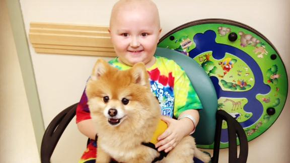 """""""I couldn't believe it. He wanted to go get chemo so he could play with Swoosh,"""" says Mitchell's mom, Kristy Montalbano."""