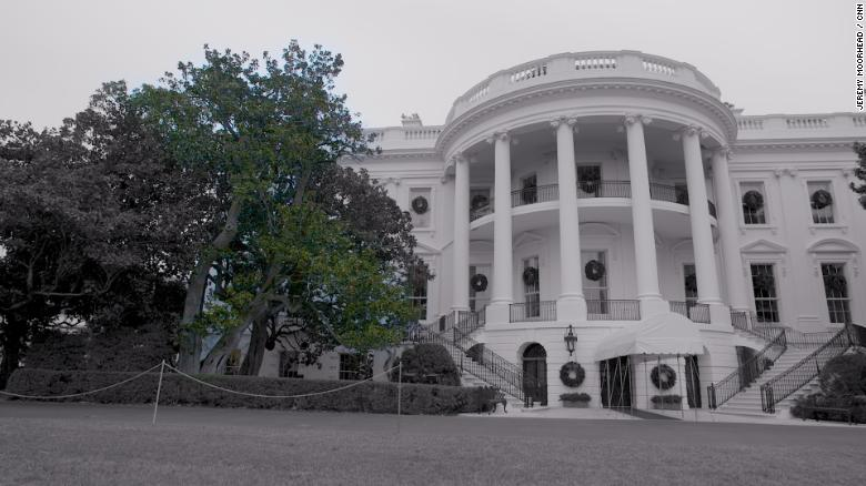 A historic tree on the White House South Lawn is coming down
