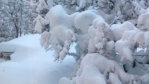 Kara Murphy of Millcreek Township, Pennsylvania said the snow blanketed her in-laws' car on Tuesday morning.