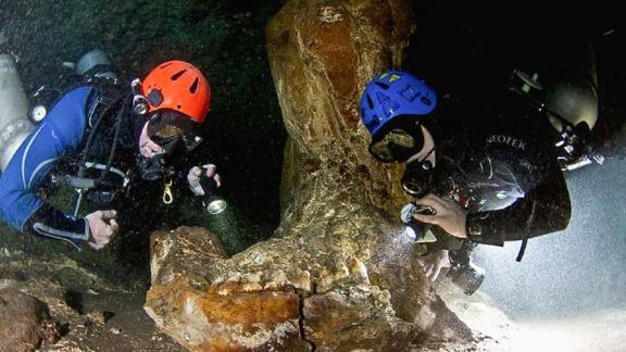 """The team have made many discoveries about the history of the Yucatan aquifer, including the jaw of a <a href=""""https://www.britannica.com/animal/gomphothere"""" target=""""_blank"""" target=""""_blank"""">Gomphothere</a> -- a family of elephant-like mammals that became extinct more than 10,000 years ago."""