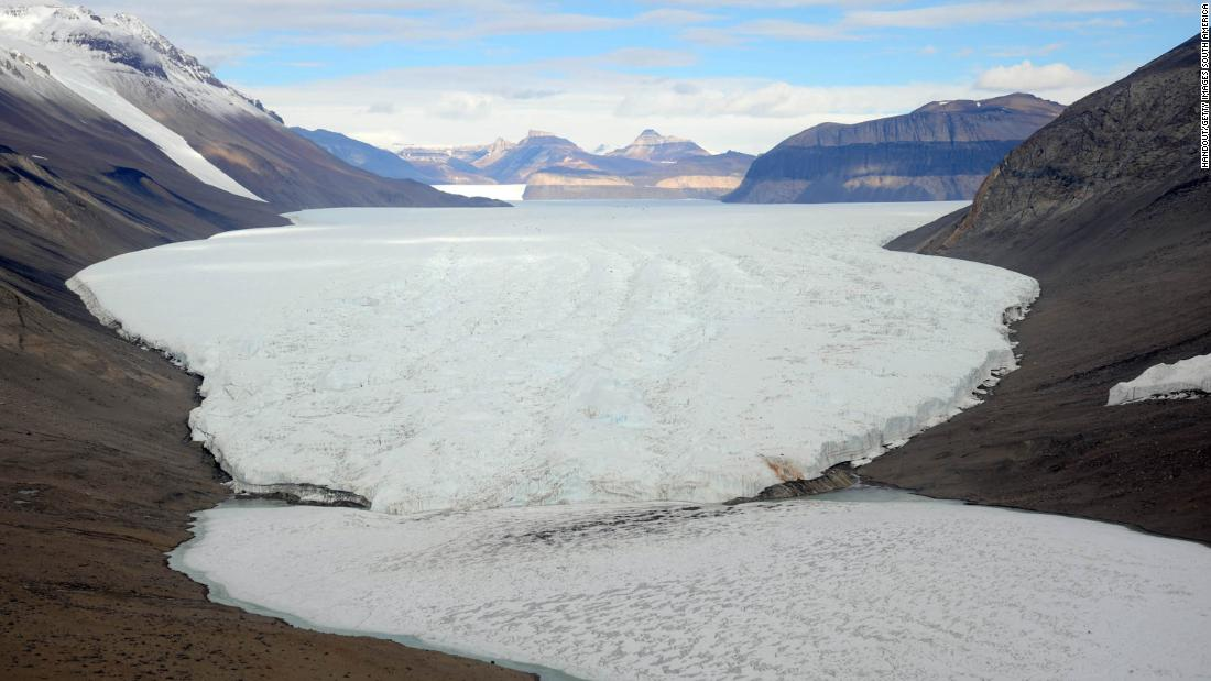 Carbon dating plant fossils in antarctica
