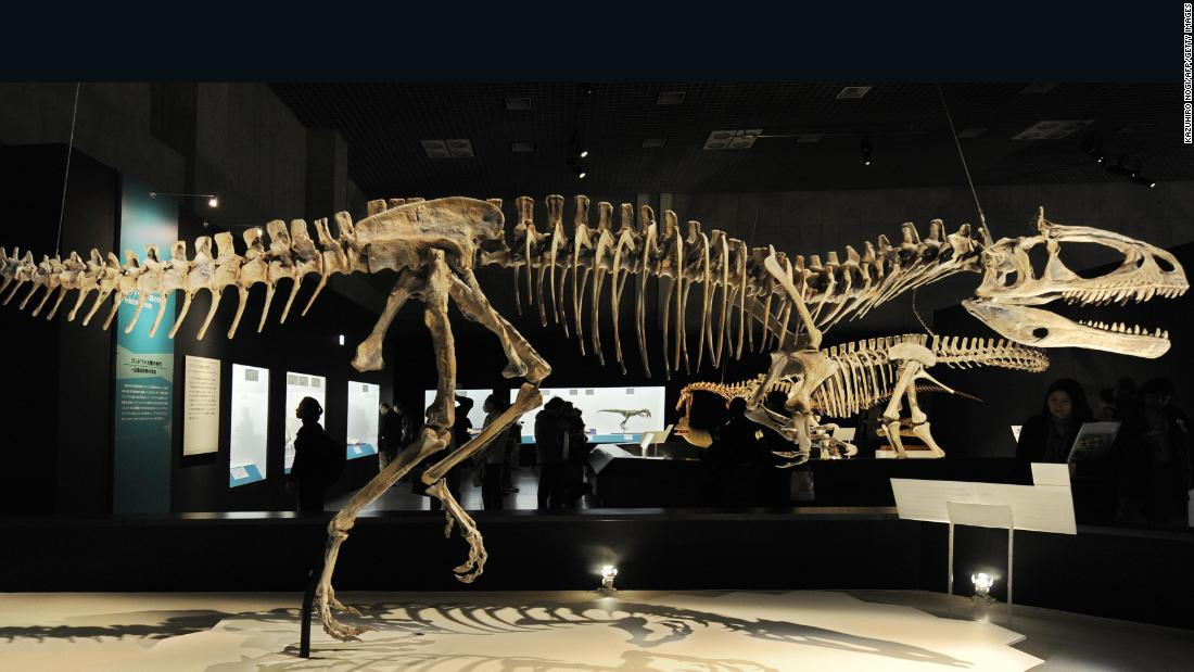 The very first dinosaur remains were discovered in the Antarctic region in 1986, followed four years later by the discovery of the first carnivorous dinosaur in Antarctica -- the Cryolophosaurus Ellioti. Measuring 21.3 feet and weighing 1,025 pounds, the Cryolophosaurus Ellioti (pictured) was one of the largest theropods of its time.<br />
