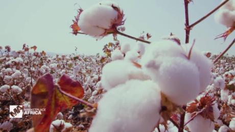 Marketplace Africa Ethiopia wants to become Africa's top cotton producer A_00000302