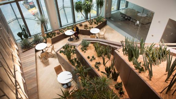 The embassy's internal gardens are intended to represent the landscape of the Grand Canyon.