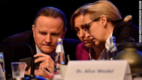 Co-leaders of the AfD's parliamentary group Joerg Meuthen (L) and Alice Weidel (R) will likely be pleased about the prospect of a new grand coalition.