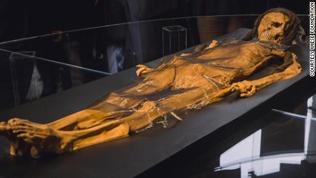 A reconstruction of Lady Cao's skeleton.