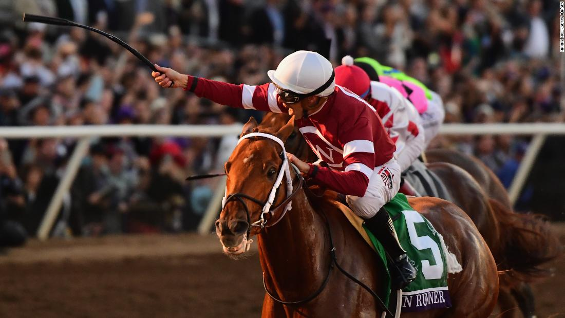 Gun Runner, winner of the Breeders' Cup Classic in November 2017, is favorite for the second running of the Pegasus World Cup. But he is up against the first five finishers in the Breeders' Cup Classic, while the 12-horse field has won more than $22 million in prize money collectively.