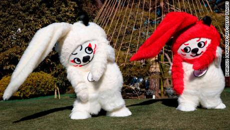 Mascots Ren (L) and G (R) gesture during a photo session to unveil the official mascots of the Rugby World Cup 2019 in Tokyo, on January 26, 2018. Blending its love of all things cute with its rich cultural heritage, Japan on January 26 unveiled the mascots for the 2019 Rugby World Cup Friday: a pair of pot-bellied lions. / AFP PHOTO / Behrouz MEHRI        (Photo credit should read BEHROUZ MEHRI/AFP/Getty Images)