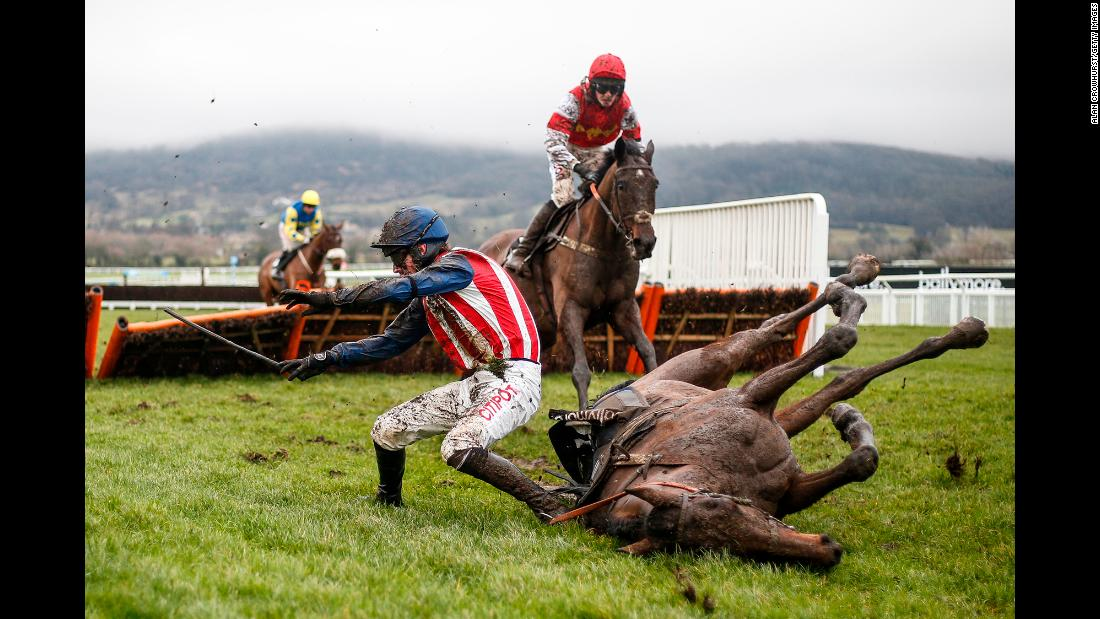Nick Scholfield falls off his horse, De Rasher Counter, during a hurdles race in Cheltenham, England, on Saturday, January 27.