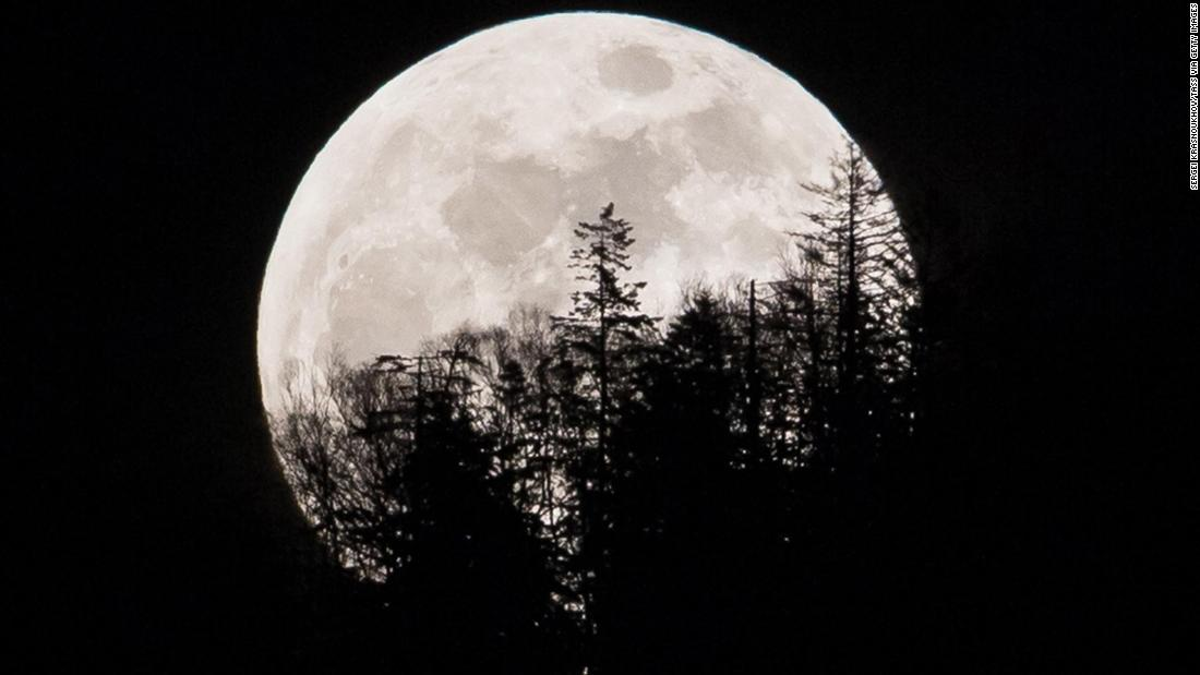 The supermoon is seen over trees in Yuzhno-Sakhalinsk on Sakhalin Island in Russia's Far East.