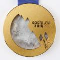 02 winter olympics gold medals