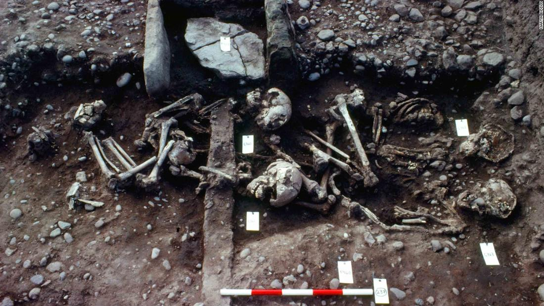 This image from 1982 shows a grave of four juveniles, ages 8 to 18, that was uncovered. The deaths were traumatic and believed to be ritualistic, accompanying the dead Vikings in the afterlife.